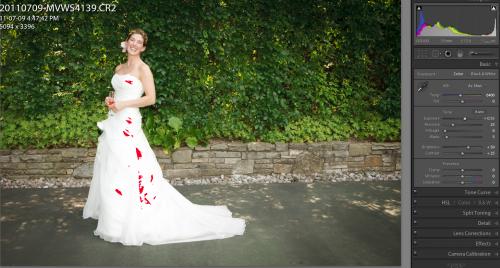 Dress (Photo: Michael Willems)