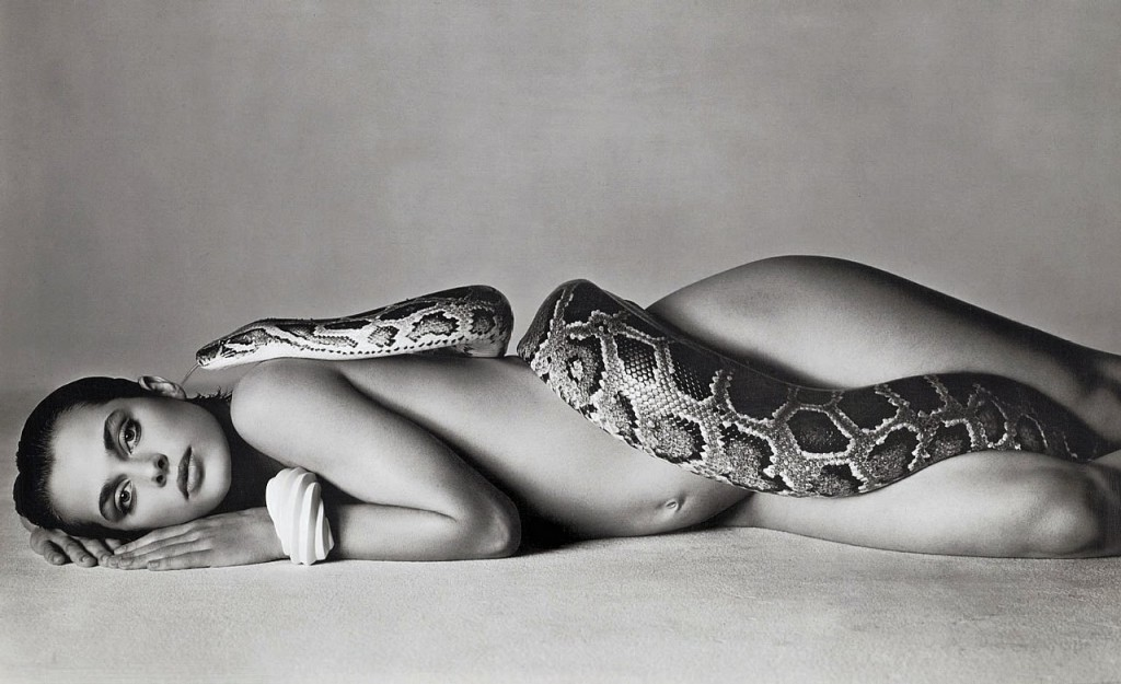 Natasha Kinski Snake Photo http://www.speedlighter.ca/2012/01/05/famous-favourites/richard-avedon-nastassja-kinski-and-the-serpent-14-june-1981/
