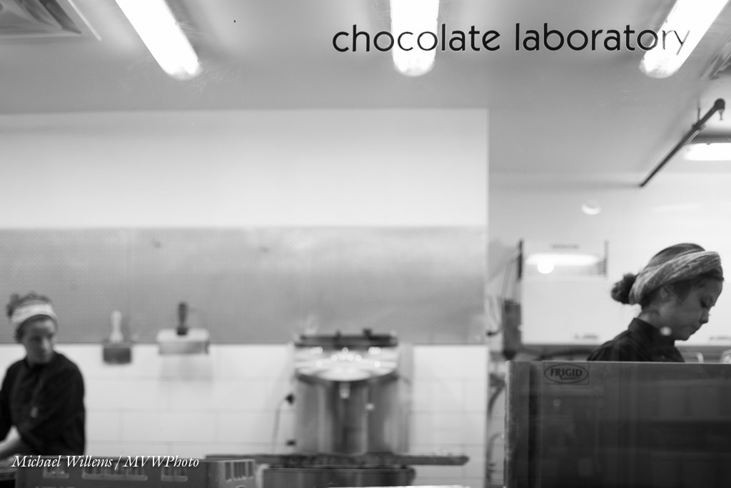 Chocolate Laboratory (Photo: Michael Willems, Photographer)
